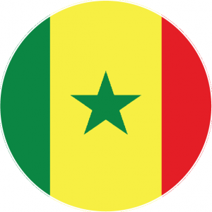 round senegal flag